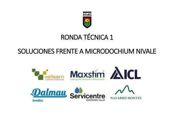 "RONDA TÉCNICA 1  ""Soluciones frente al Microdochium nivale"""